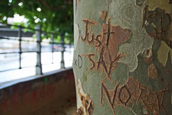 """Baum mit Inschrift """"Just say No"""""""
