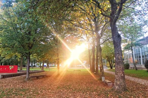 Sonnenuntergang auf dem Schulhof