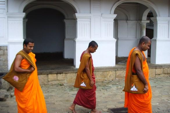 Buddhistische Mönche in Sri Lanka