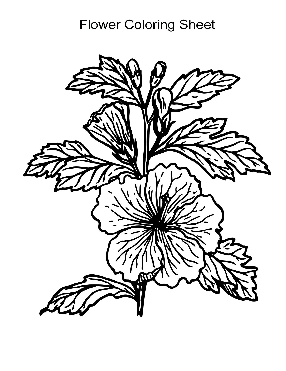 10 Flower Coloring Sheets For Girls And Boys All Esl
