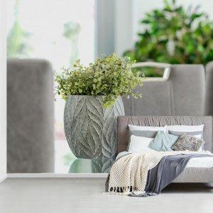 Fotobehang vinyl - Kamerplant op een tafel breedte 360 cm x hoogte 240 cm - Foto print op behang (in 7 formaten beschikbaar)