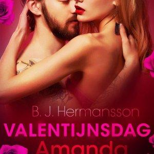 Valentijnsdag: Amanda - erotisch verhaal