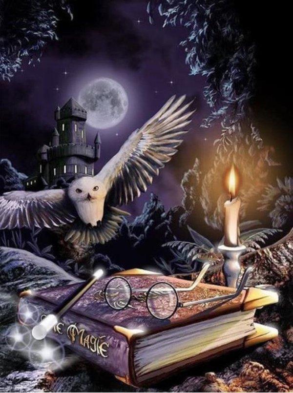 Premium Paintings - Diamond Painting Volwassenen en kinderen - Gemaakt van gerecycled plastic - Harry Potter - 30x40cm - Hogwarts - Hedwig