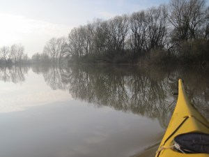 Kayaking in Meinderswijk, Arnhem. With High water in the floodplain