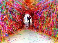 14 Best Neon Wall Paint - DMA Homes | 27206