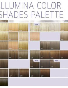 Wella professionals illumina hair color colour by also  all eyes rh alleyesonmehair