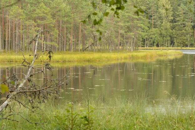 Pundsu järv