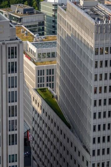 Katused on rohelised