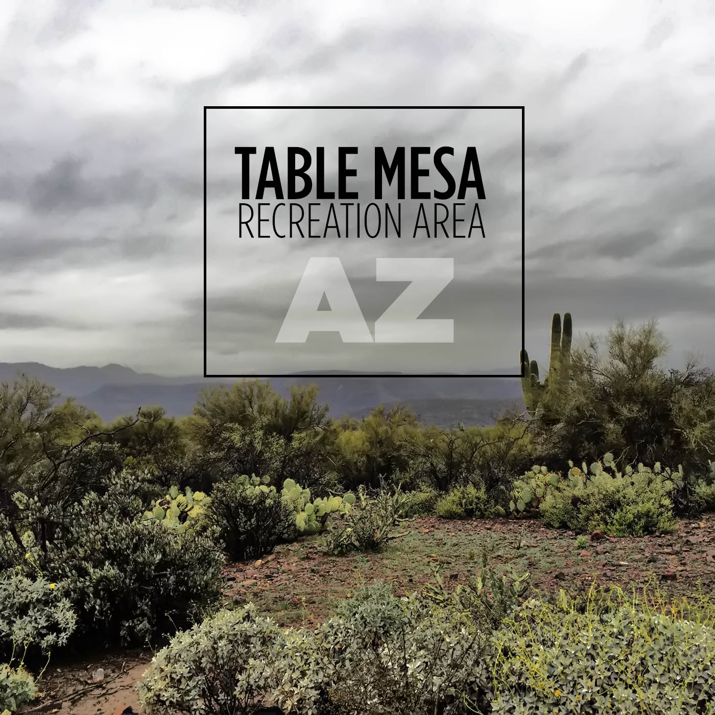 Table Mesa Desert Cleanup with Discount Tire  All for the