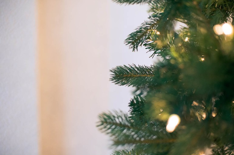 Choosing a slim Christmas tree