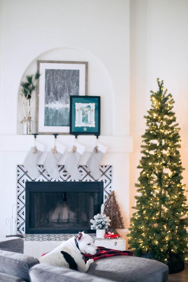 Choosing a slim Christmas tree