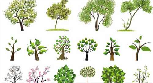 tree vector 500 free