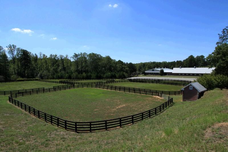 All Georgia Realty Deborah Weiner Re Max 187 Equestrian