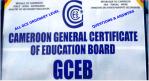 GCE 0 Level Past Questions
