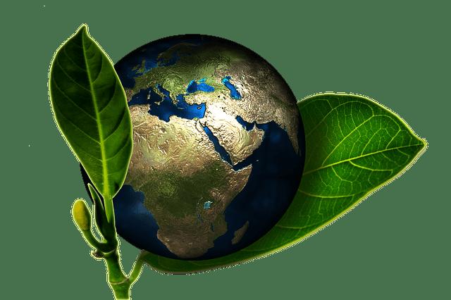 cesped artificial ecologico