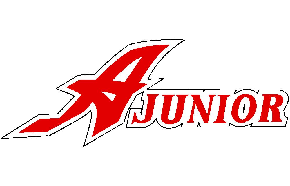 安中ジュニアソフトボールクラブ