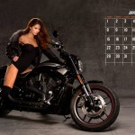 Harley Davidson Hd Wallpapers High Quality All Hd Wallpapers