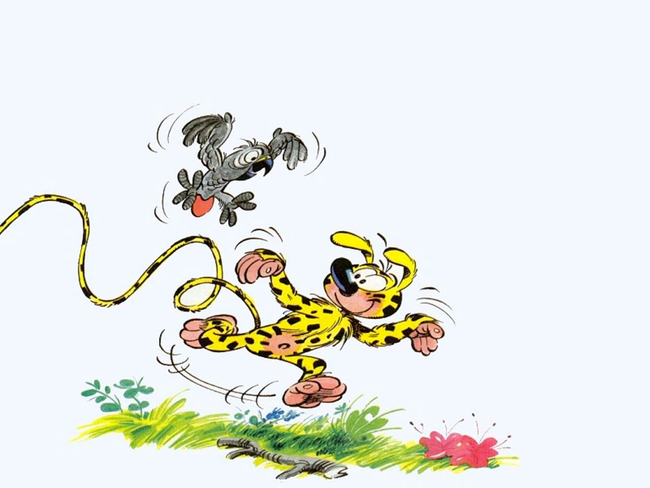 Hd Disney Cartoon Wallpapers Marsupilami Cartoon New Hd Wallpapers High Quality All