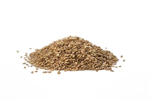 Achat en ligne de Grains de petit épeautre bio décortiqués