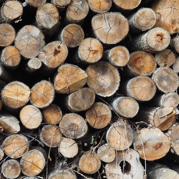 bois de chauffage chataignier longueur 2m