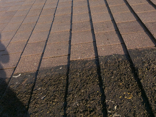 gallery-roof-cleaning