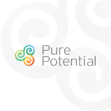 Alliance Partners with Pure Potential Development to provide MyObjectives software to Fortune Global 500 companies