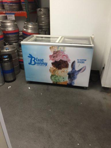 Blue-Bunny-6