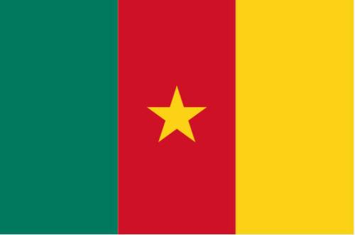 aim-global-cameroon_flag