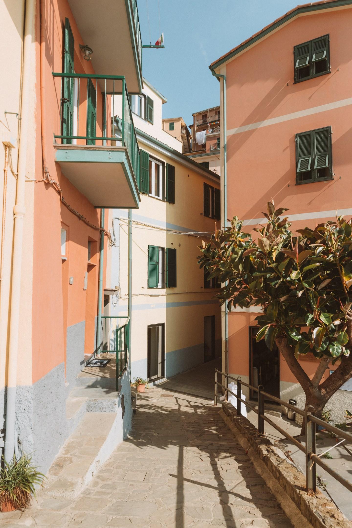 Colorful streets of Corniglia