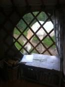 Merlin grazing around the yurt, Caplor