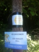 Lea Bailey honey