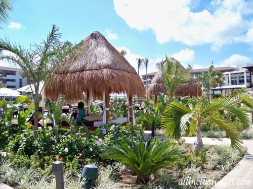 Dreams Playa Mujeres poolside Bali beds