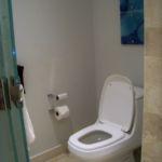 Dreams Playa Mujeres Jr. Suite separate toilet area