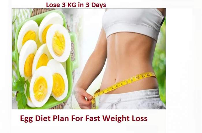 Egg Weight Loss Only Needs 3 Days Full-Day Egg Diet Plan | How To Lose 3 KG In 3 Days