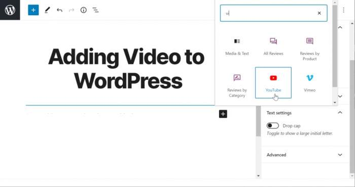 How To Add A Video To WordPress Blog Posts 2021