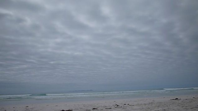 800px-Tortuga_Bay_-_Island_of_Santa_Cruz,_Galapagos