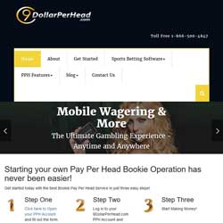 9DollarPerHead.com Sports Betting Software Review