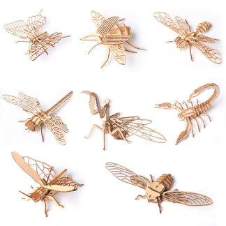 Maquettes Insectes
