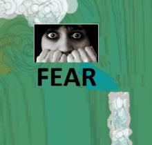 FEAR 2 GFX