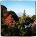 Mt. Tamalpais, Marin County, CA