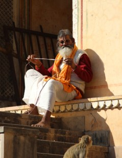 Impressive BEARD on a holy man at the Monkey Temple in Jaipur, india.