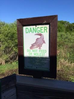 alligator sign