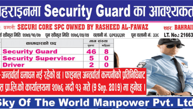 Photo of 61 Candidates Required for Security Guard & Driver job In Baharin