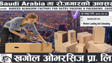 Photo of 22 Candidates Required in Saudi for PACKING & PACKAGING Company