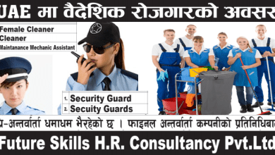 cleaner_security Guard