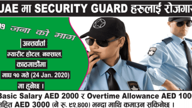 Photo of 199 Candidates Required for Security guard post