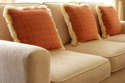 Upholstery Cleaning Services Lynnwood Mountlake Terrace Mill