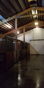 livestock barn cleaning