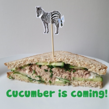 cucumber is coming 1