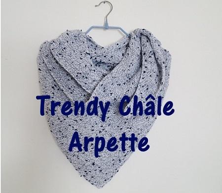 0.Châle Arpette